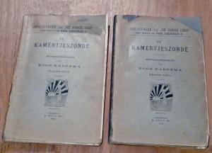 De eerste uitgave van Kamertjeszonde verscheen als deel vier van de 'Jonge Gids'