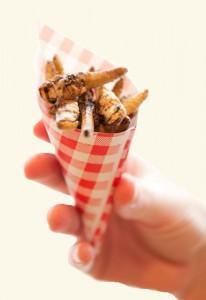 Insecten eten als snack (foto: Lotte Stekelenburg)