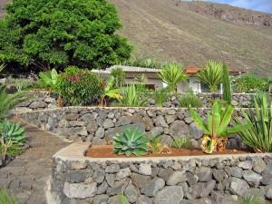La Palma. We logeerden in het eenvoudige huis van een vriendin, 100 meter van de Atlantische Oceaan en Aloë Vera-planten op de terrassen.
