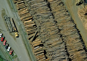 houtfabriek2