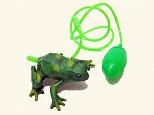 kikker_speelgoed