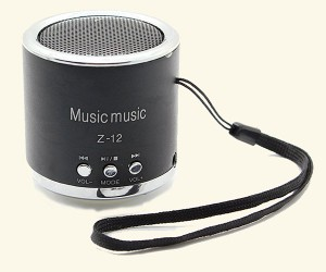 Speaker zonder bluetooth Z-12