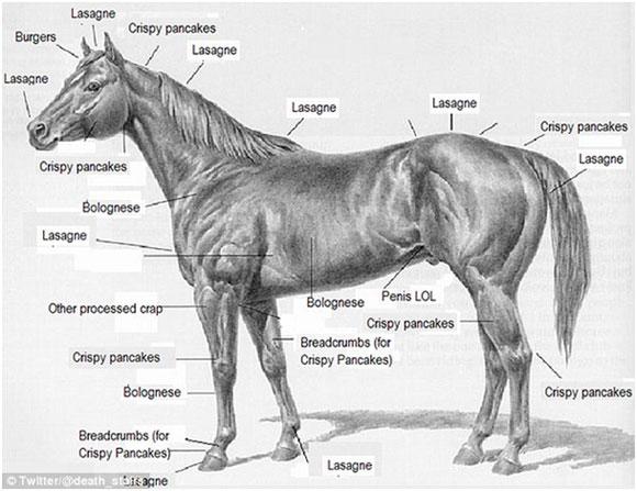 paardenvlees-3