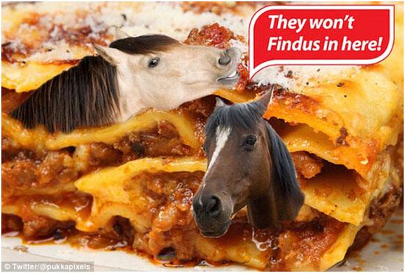 Paardenvlees Fraude Rene Van Maarsseveen